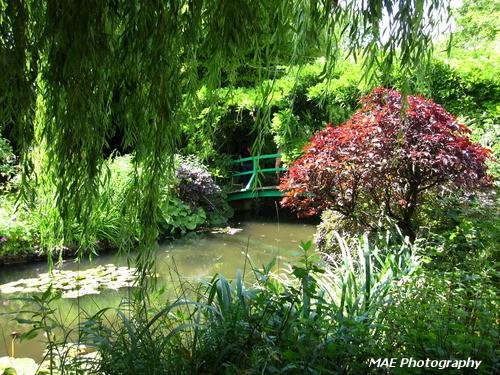 Jardin d'Eau.
