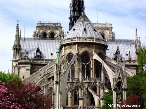 Cathédrale Notre Dame de Paris.